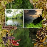 Escape to the Rainforest - Bundle