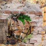 Escape on Horseback - Photo Masks