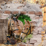Escape on Horseback - Kit