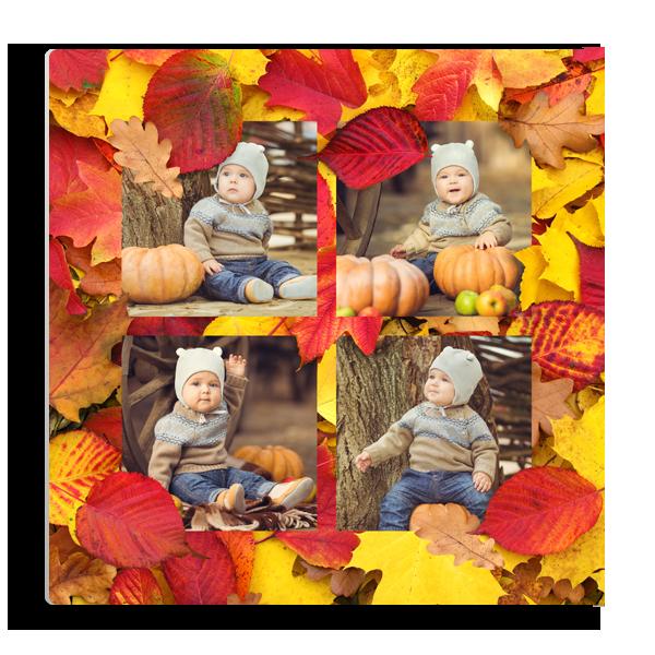 Falling Leaves 1 Panel