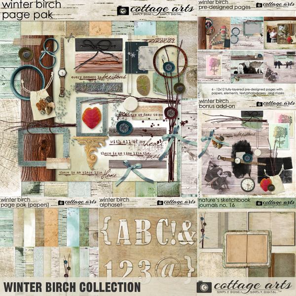 Winter Birch Collection Digital Art - Digital Scrapbooking Kits