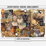 History Hunters - Museum Embellishments