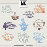 Bits of Winter - Lettering