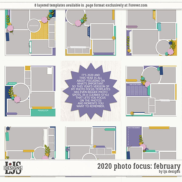 2020 Photo Focus February