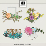 Bits of Spring -  Clusters