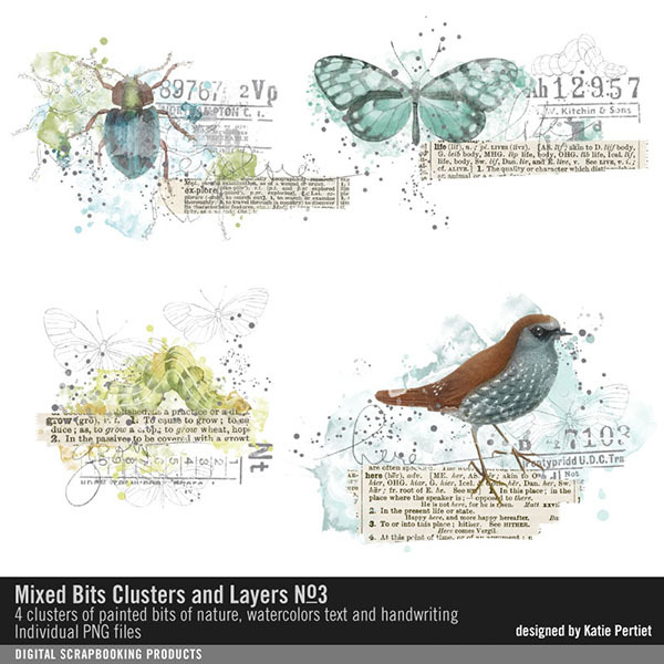 Mixed Bits Clusters and Layers No. 03 Digital Art - Digital Scrapbooking Kits