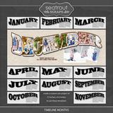 Timeline Months