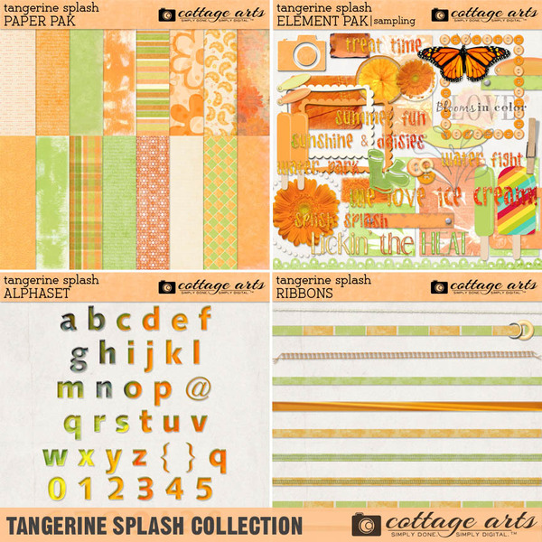 Tangerine Splash Collection Digital Art - Digital Scrapbooking Kits