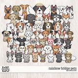 Rainbow Bridge Pets