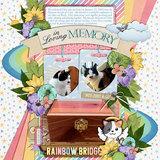 Rainbow Bridge Papers