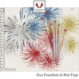 Our Freedom Is Not Free Fireworks
