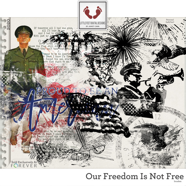 Our Freedom Is Not Free Brushes Digital Art - Digital Scrapbooking Kits