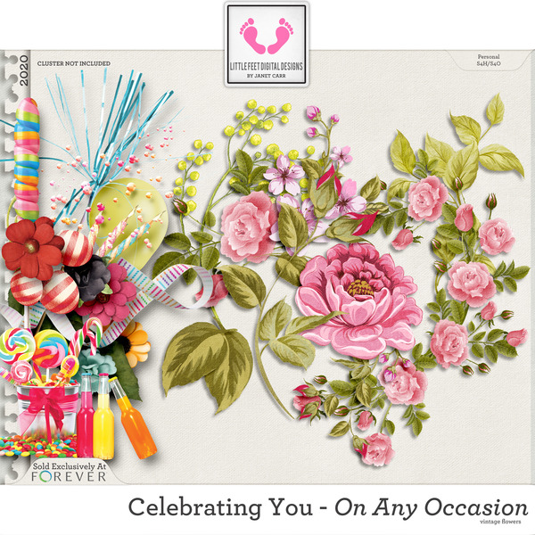 Celebrating You On Any Occasion Vintage Flowers Digital Art - Digital Scrapbooking Kits