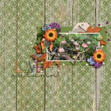 Country Pumpkin Wood Papers