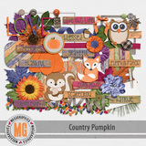 Country Pumpkin Kit