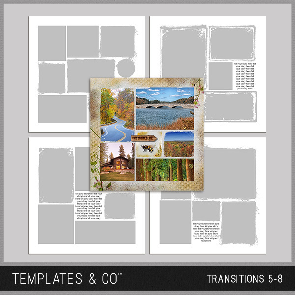 Transitions 5-8 Digital Art - Digital Scrapbooking Kits