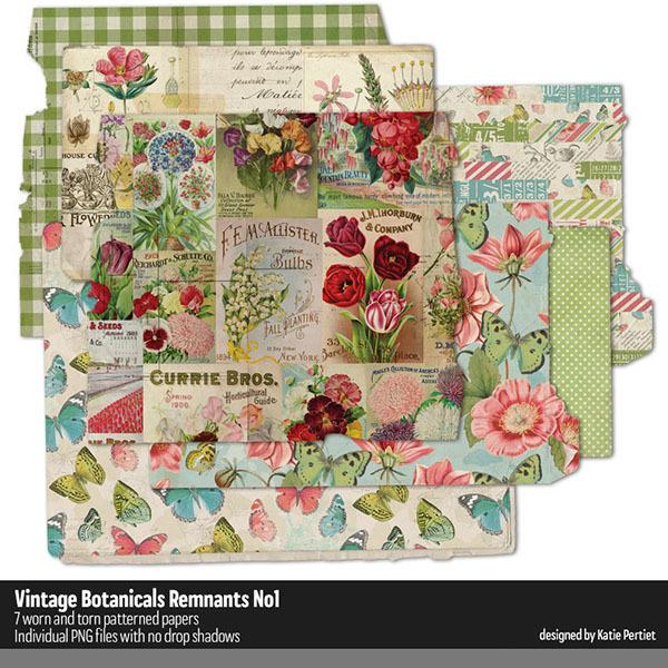 Vintage Botanicals Remnants 01 Digital Art - Digital Scrapbooking Kits