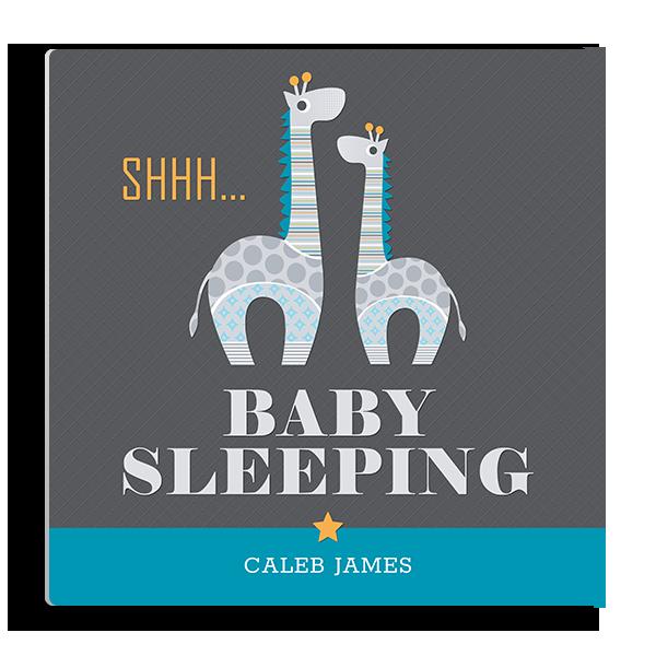 Shhh Baby Sleeping Panel