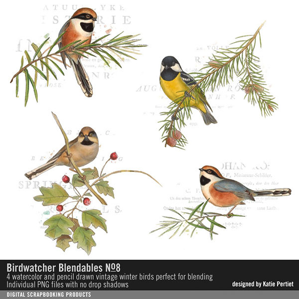 Birdwatcher Blendables 08 Digital Art - Digital Scrapbooking Kits