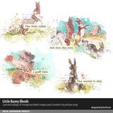 Little Bunny Blends 01
