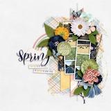 A Spring Day Bundle