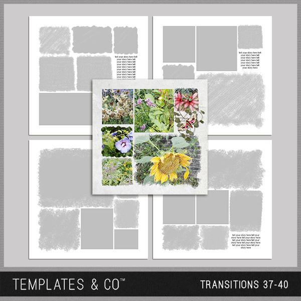 Transitions 37-40 Digital Art - Digital Scrapbooking Kits
