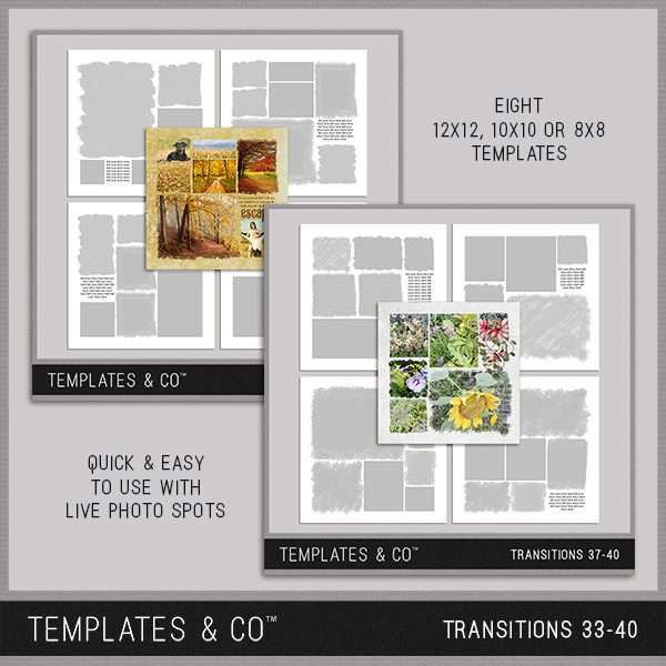 Transitions 33-40 Digital Art - Digital Scrapbooking Kits