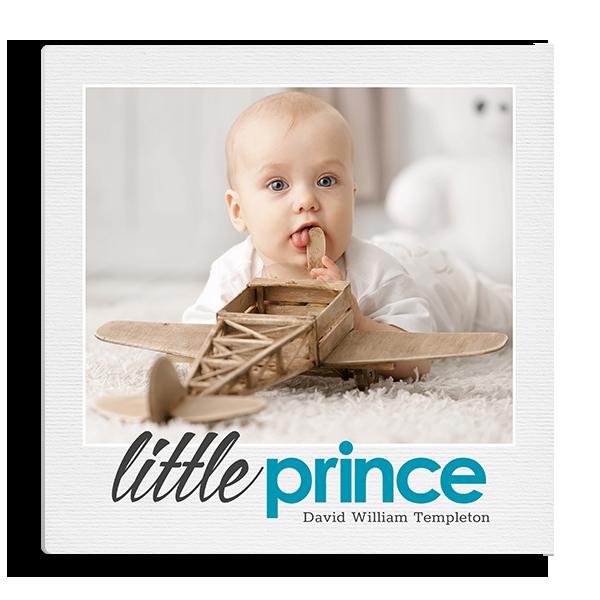 Little Prince Panel Panel