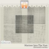 Mariner Into The Vast Big Bundle