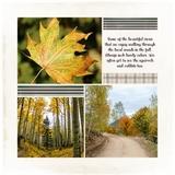 5x5 Mini Photo Book 1