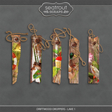 Driftwood Droppers - Lake 1