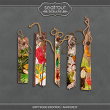 Driftwood Droppers - Rainforest