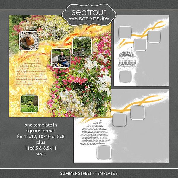 Summer Street - Template 3 Digital Art - Digital Scrapbooking Kits