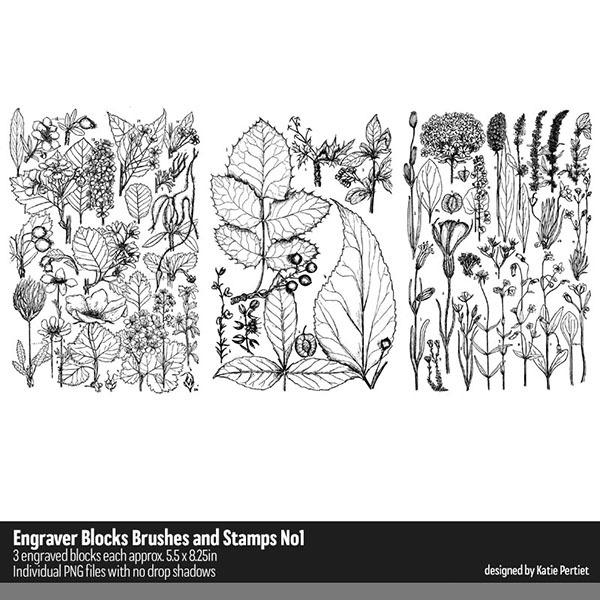 Engraver Blocks Brushes and Stamps 01 Digital Art - Digital Scrapbooking Kits