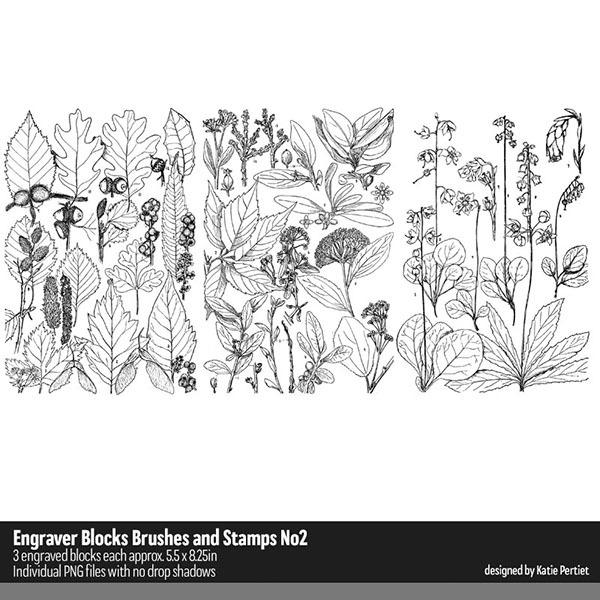 Engraver Blocks Brushes and Stamps 02 Digital Art - Digital Scrapbooking Kits